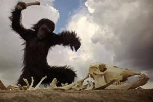 scimmia 2001 odissea nello spazio